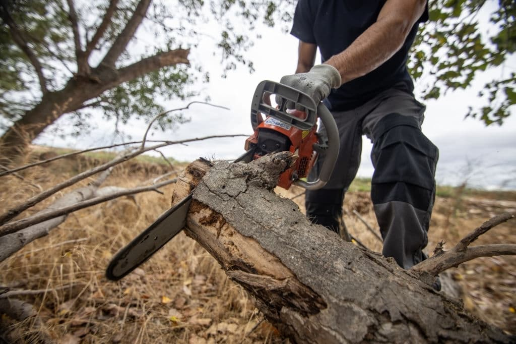 Why Electric Chainsaw is best